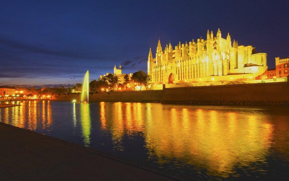 Click to View Palma